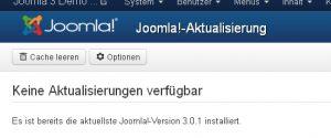 """Hinter """"Optionen"""" im Aktualisierungsmenü in Joomla3 kann man die Art des Aktualisierungsservices wählen"""