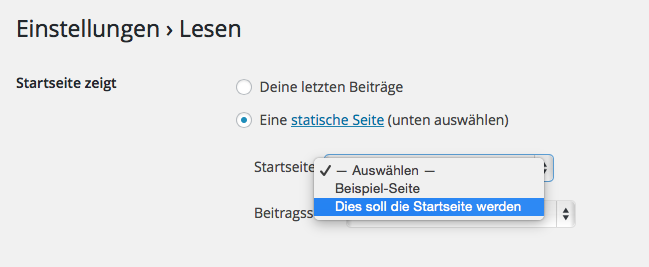 Bildschirmfoto Auswahl einer statischen Startseite für wordpress