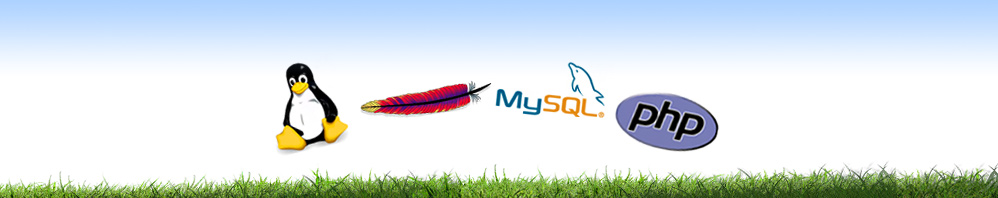 LAMP Stack: Linux Apache MySQL PHP
